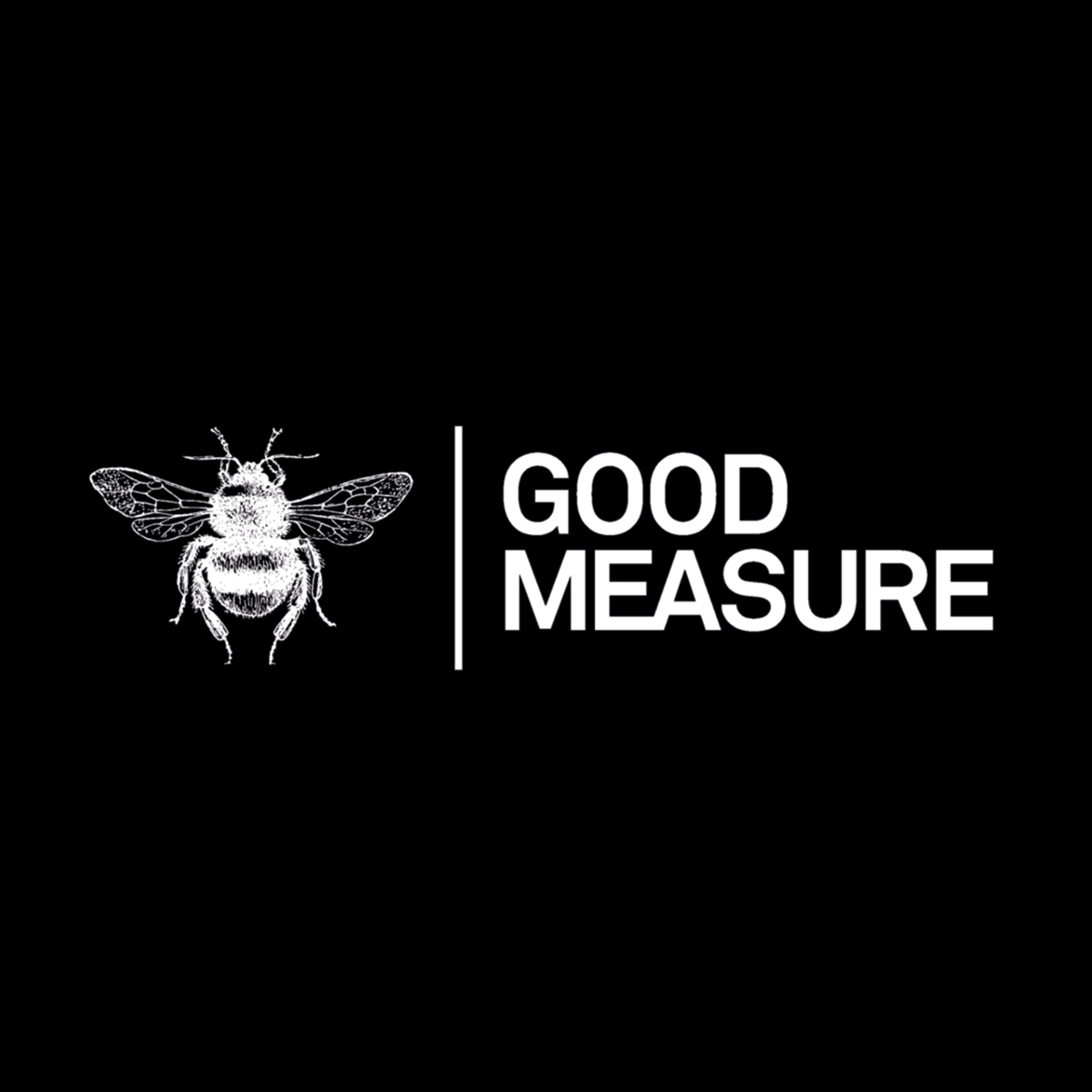 GOOD-MEASURE